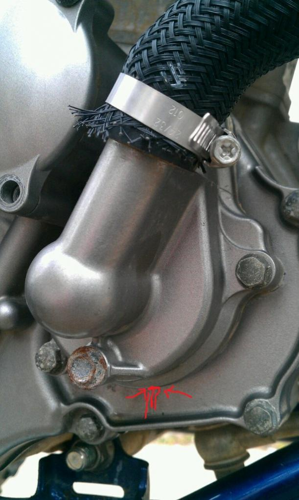 Please help! Leaking water pump - Suzuki Z400 Forum : Z400 Forums