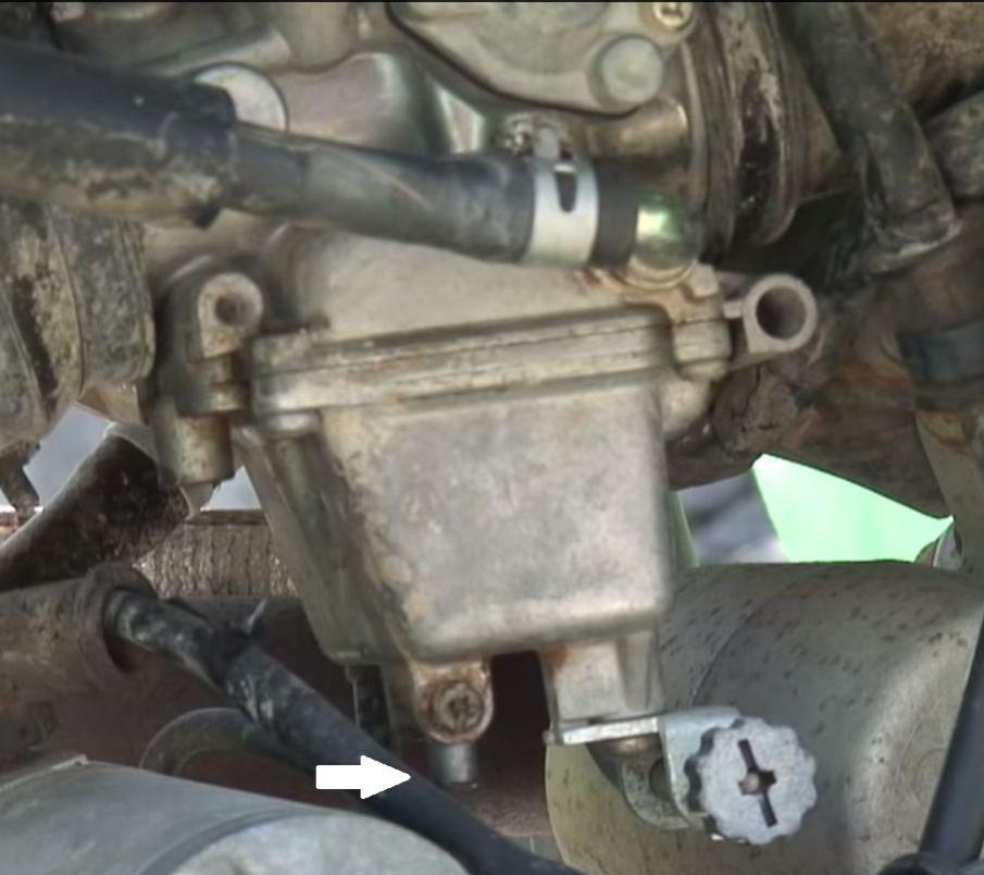 Oil? Leaking Left Side Motor - Suzuki Z400 Forum : Z400 Forums
