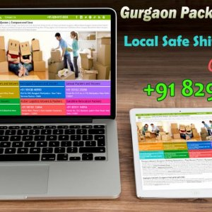 packers movers gurgaon 13