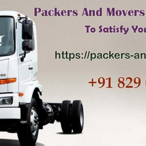packers and movers delhi 1