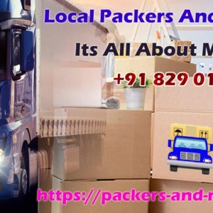 packers movers delhi 34